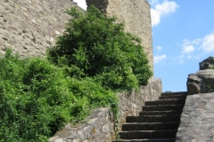Ruine in Neu-Bamberg (Photo: Chr. Donnerstag)