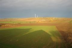 Selzer Berg, im Hintergrund Windkraftanlagen der Ortsgemeinde Zornheim (Photo: Klaus Penzer)
