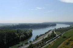 Blick auf den Rhein von den Nackenheimer Weinbergen (Photo: Bodo Sontheimer)